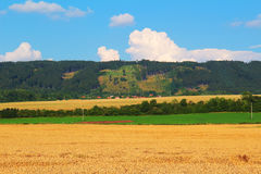 Zelezne hory with large wheat fields Stock Photo