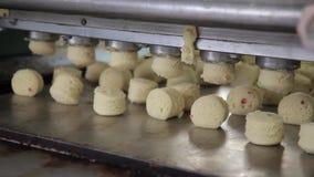 Zelfde stukken van deegdaling op transportband van deegvoeder in bakkerij stock video