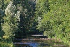 Zelivka de rivière avec un pêcheur photo libre de droits