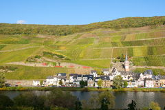 Zell-Merl on the Moselle. In autumn Royalty Free Stock Image