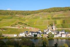 Zell-Merl no Moselle Imagem de Stock Royalty Free