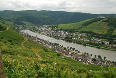 Zell Mosel & vineyards Royalty Free Stock Images