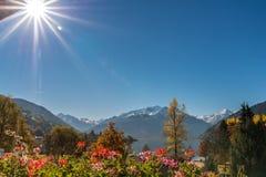 Zell vue de lac à †«d'un balcon avec des géraniums du lac et des montagnes images libres de droits