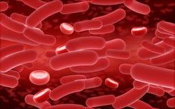 Zellen des Bluts 3D und des Virus Lizenzfreie Stockfotografie