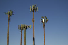 Zellen-Kontrollturm-Palmen Stockbild