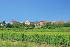 Zellenberg,Alsace,France Royalty Free Stock Image