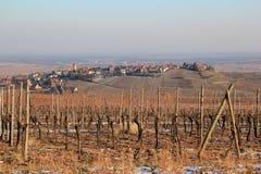 Zellenberg in the vineyard of Alsace Stock Images