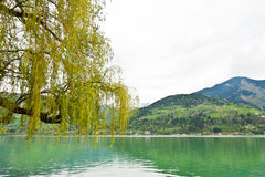 Zeller am See Royalty Free Stock Image