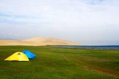 Zelt auf dem Rasen Lizenzfreies Stockfoto