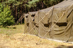 Zelt im Holz Stockbild