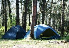 Zelt im Wald lizenzfreie stockfotografie
