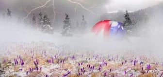 Zelt nach dem Sturm Stockfotos