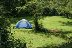 Zelt nahe einem Wald lizenzfreie stockbilder