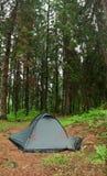 Zelt nestled im Wildniscampingplatz des frühen Morgens Lizenzfreies Stockbild