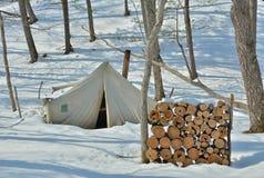 Zelt in Winterwald 2 Stockbilder