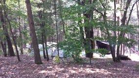 Zelte im Holz Lizenzfreie Stockfotos