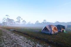 Zelte mit Nebel Stockfotos