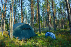 Zeltlager im Wald Lizenzfreies Stockbild