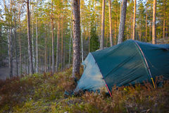 Zeltlager im Wald Stockbilder