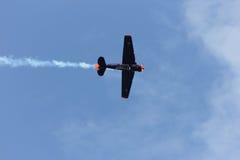 ZELTWEG ÖSTERRIKE - JULI 02, 2011: Flygtjurar som är norr - amerikan T Arkivbild