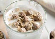 Zemelen en havervlokken in glas met yoghurt, macro stock foto