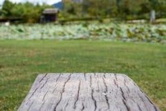 Zementieren Sie Bank im Holz wie Oberfläche mit Unschärfegartenhintergrund Stockfoto