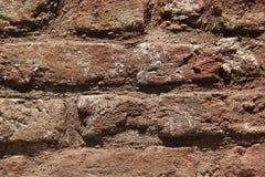 Zementierte graue Maurerarbeit mit fallendem Gips lizenzfreie stockbilder