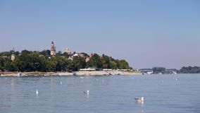 Zemun,Serbia,view from the river Danube. With seagulls in the front Royalty Free Stock Image