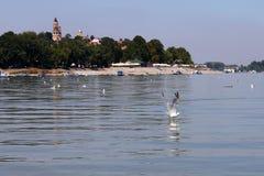 Zemun, Serbien, Ansicht vom Fluss Donau stockfoto