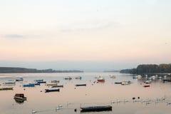 Zemunkade Zemunski Kej in Belgrado, Servië, op de rivier van Donau, in de herfst, bij zonsondergang wordt gezien die Royalty-vrije Stock Fotografie