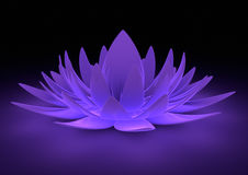 λουλούδι zen Στοκ Φωτογραφία