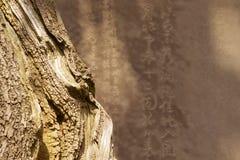 Zen Abstract Stock Image
