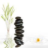 Zen Abstract. Of black spa stones in perfect balance and natural bamboo grass with reflection over grey rippled water and a lotus lily flower, against white Royalty Free Stock Photos