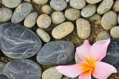 Zen abstrato II Fotografia de Stock Royalty Free