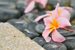 Zen abstrato mim Imagens de Stock Royalty Free