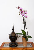 Zen ambiance with orchid Royalty Free Stock Photo