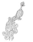 Zen art stylized peacock. Hand drawn doodle Royalty Free Stock Images