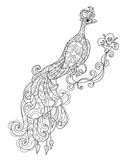Zen art stylized peacock. Hand drawn doodle Royalty Free Stock Photo