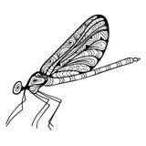 Zen artdragonfly Immagine Stock Libera da Diritti