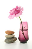 Zen atmosphere, vase and rose. Zen atmosphere with rose and pebbles, isolated Royalty Free Stock Images