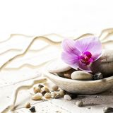 Zen attitude with mineral cup of stones and flower. Branches on beige stones for soft spa decor Stock Photography
