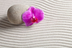 Zen Background. A stone and a orchid on raked sand - a niche zen-like backgorund Stock Photos