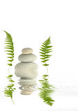 Zen Balance. Zen abstract of grey spa stones two green fern leaves either side and  reflection over rippled water. Against white background Stock Photo