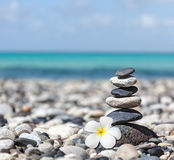 Zen Balanced Stones Stack With Plumeria Flower Royalty Free Stock Photos
