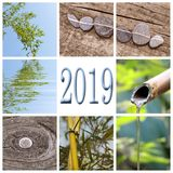 2019 zen bamboo square collage. 2019, zen bamboo square collage royalty free stock photography