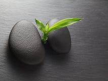 Zen bambus i kamienie Obrazy Royalty Free
