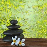 Zen basalt stones and bamboo Royalty Free Stock Photos