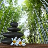 Zen basalt stones and bamboo Stock Photo