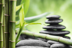 Zen basalt stones and bamboo. Still life with zen basalt stones and bamboo royalty free stock photography