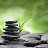 Zen basalt stones and bamboo. Still life with zen basalt stones and bamboo stock photography